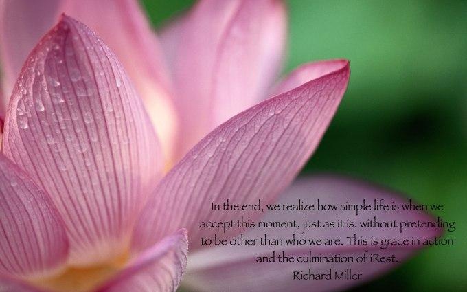 Lotus for blog